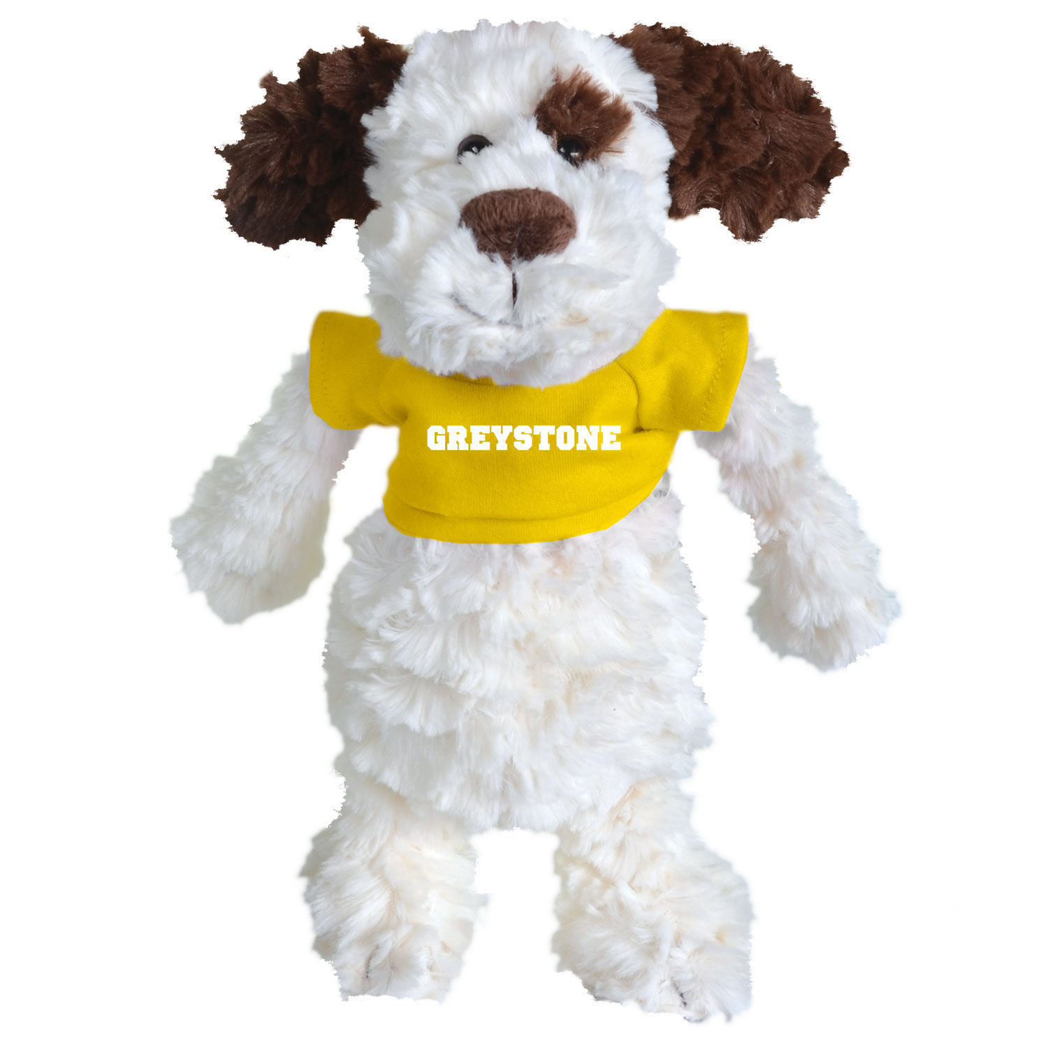 Picture of Dog with Tshirt