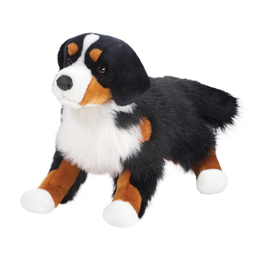 Picture of Alps Bernese Mountain Dog