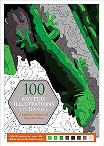 Picture of 100 Mystery Illustrations to Unveil