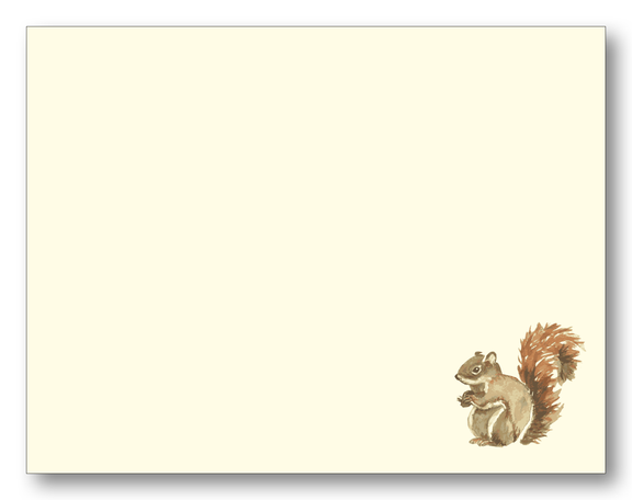 Picture of Squirrel Note Cards